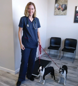 Veterinarian Clinic Queen Creek